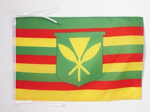 AZ FLAG Bandera de Hawaii Kanaka MAOLI 45x30cm - BANDERINA Hawaianos NATIVOS 30 x 45 cm cordeles