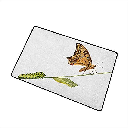 Lindsay Gosse Schwalbenschwanz Schmetterling Fußmatte Teppich Raupe Puppe Schmetterling Leben Stufen Inspirierende Natur Fußmatte Hellbraun Grün