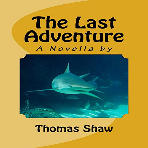The Last Adventure audiobook cover art