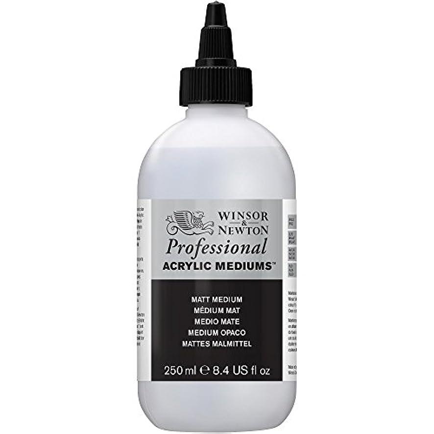 Winsor & Newton Professional Acrylic Matt Medium, 250ml