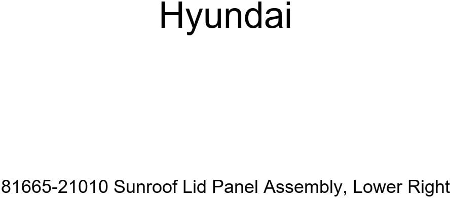 Genuine Hyundai 81665-21010 Sunroof Lid Assembly Indianapolis Mall Panel Ri Lower Ranking integrated 1st place