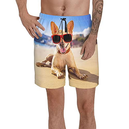 Swim Trunks Long Board Shorts ,Beach Etiquette for Dog Owners ,Beach Swimwear Bathing Suits with Mesh Lining Andpockets