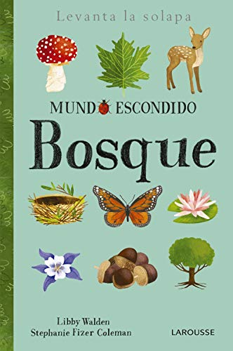 Mundo escondido. Bosque (Larousse - Infantil / Juvenil - Castellano - A Partir De 3 Años - Libros Singulares)