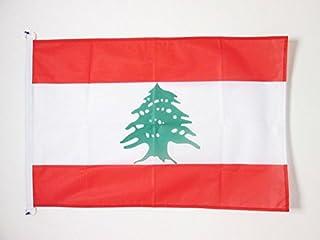 AZ FLAG Lebanon Nautical Flag 18'' x 12'' - Lebanese Flags 30 x 45 cm - Banner 12x18 in for Boat