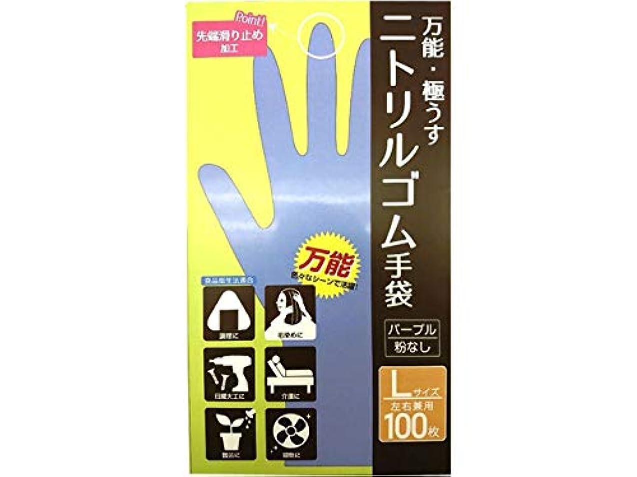 珍味デッキバンクCS ニトリルゴム手袋 L 100P