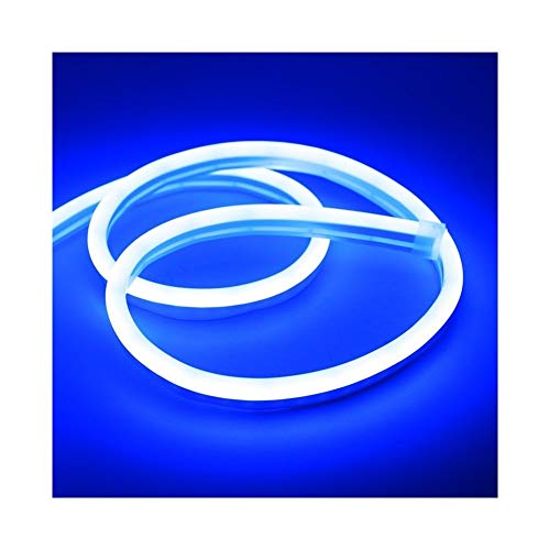 CHUNMA 6mm Reduzca la luz de neón 12V tira LED SMD 2835 120leds / M del tubo flexible de la cuerda a prueba de agua for el bricolaje día de fiesta de la decoración de la Luz (Color : Blue)
