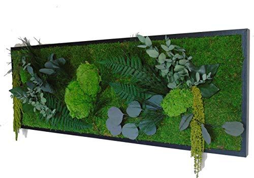 Myvegetal - Quadro vegetale stabilizzato, 100 x 35 cm