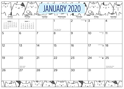 2020 Cats Magnetic Refrigerator Calendar Pad by Bright Day, 16 Month 8 x 10 Inch, Cute Kitten Kitty Animal Planner Office Wall