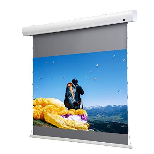 celexon Home Cinema Pantalla motorizada Tension Dynamic Slate ALR, Pantalla de tensión de Cuerda sin enmascarar, Pantalla de Contraste - 298 x 168cm - 16:9 - Gain 0,8