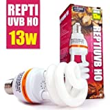 Uvb Lamps Review and Comparison