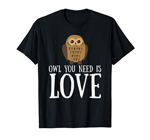 Funny Owl Lover Slogan Pun Gift Owl You Need Is Love T-Shirt