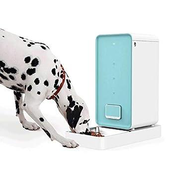 Pet Bowl Distributeur automatique d'aliments pour animaux intelligents Pet 6L, programmable avec minuterie, jusqu'à 4 repas par jour (bleu et blanc) Arts De La Table Animale ( Color : White )