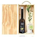 Set Gourmet Regalo con árbol olivo natural pequeño y aceite de oliva virgen extra