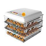 WLJBD Incubadora Digital Hatcher Automático con Control de Temperatura Fuente de alimentación Dual Turnado automático para incubar Turquía Pato Ganso Codorniz Huevos De Pollo (Tamaño: 36 Huevos) / 82