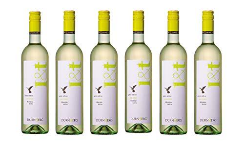 Grüner Veltliner L&T (leicht und trocken) 2019 - Qualitäts Weißwein aus Österreich,trocken (6 x 0,75l)
