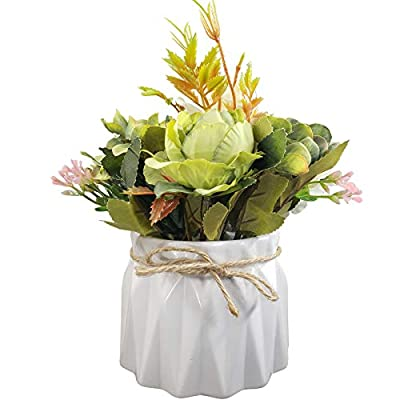 EverWin Artificial Flowers with Ceramic Vase fo...