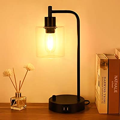 Industrial Table Lamp Dimmable,Nightstand Table Lamp with 2 USB Ports,Winshine Glass Shade Bedside Table Lamp,60W Equivalent Bulb Included,Bedroom Desk Reading Lamp for Living Room,Office