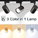 Z.L.FFLZ Kronleuchter LED-Schienenlichter 40W Led Schiene Licht...