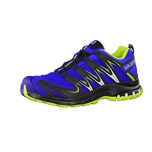 SALOMON XA Pro 3D, Chaussures de Trail Homme, Bleu (Cobalt/Process Blue/Granny Green), 42 2/3 EU