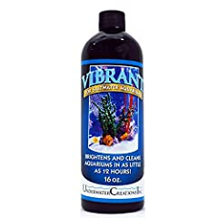 marine aquarium cleaner