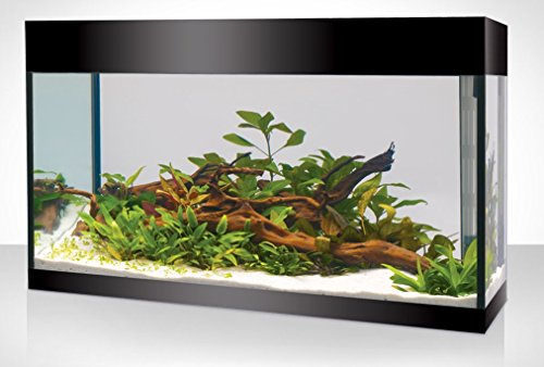 Askoll acquario KIT XL ABSOLUTE BLACK