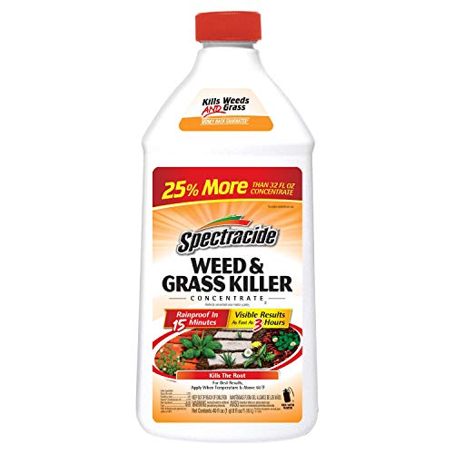 Spectracide Weed & Grass Killer Concentrate2, 40-Ounce