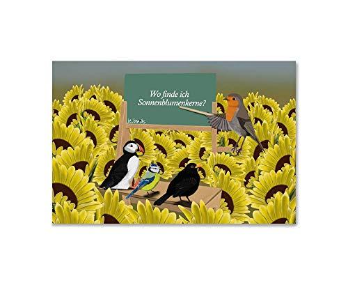 jz.birds Kinderzimmer Kunst für Kinder Vogel Poster Vogelmotiv Kunstdruck auf Fotopapier Rotkehlchen als Lehrerin