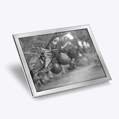 Destination Lot de 2 sets de table en vinyle argenté 20 x 25 cm – BW – Citrus Fruits tilleul/tilleul/fruitier/Tapis de salle à manger/lavable/imperméable #37618