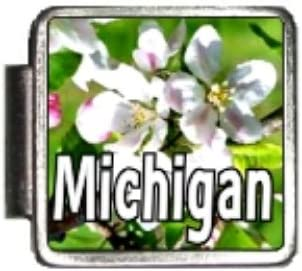 Clearly Charming Michigan State Flower Apple Blossom Photo Italian Charm Bracelet Link