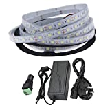 Ahorraluz Kit Tira 12v 5050 Sumergible Frio Puro (6000-6500k) + Transformador 5A Waterproof (5 Metros, 300 Leds, 60 led/m, IP67),...