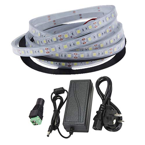 Ahorraluz Kit Tira 12v 5050 Sumergible Frio Puro (6000-6500k) + Transformador 5A Waterproof (5 Metros, 300 Leds, 60 led/m, IP67), Blanco Frío