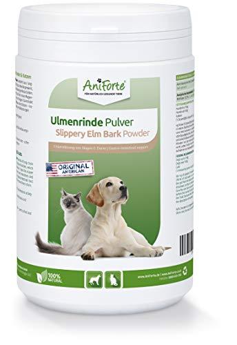AniForte Poudre d'écorce d'orme d'Amérique 250g - produit naturel pour chiens et chats, bien-être du tractus gastro-intestinal, soutien de la flore intestinale, apport de vitamines