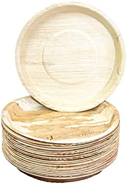 NewGen- Disposable Areca Leaf Plates, 10 Inch, Dinner Plates, Pack of 20, Round, Export Quality, (Off-White)