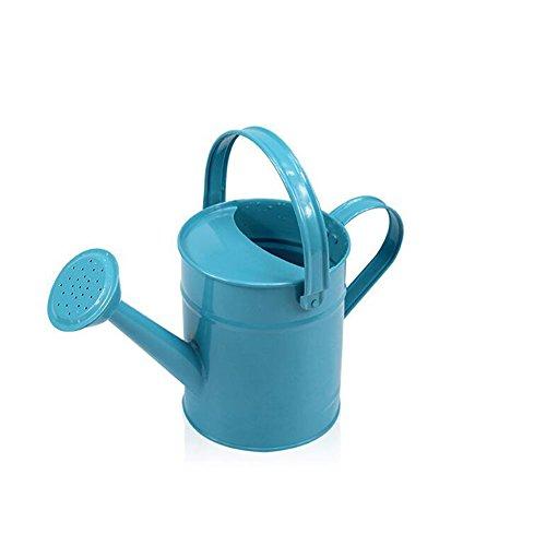 WANGXN Arrosoir Pot De Douche Bouquet De Plantes en Pot Accuei Longue Bouche Le Fer Arrosoir Intérieur,Blue,12X22X29CM