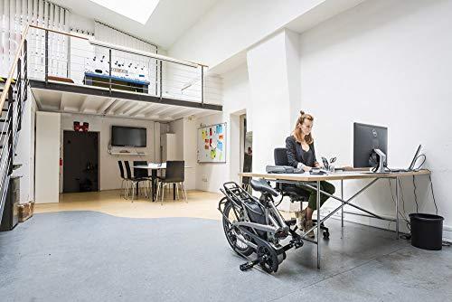 Tern Faltrad Vektron S10 Fahrrad E-Bike 10 Gang Alu 25 km/h Kettenschaltung Shimano 36V 250W, CB19EHSD10HLRLB23 - 5