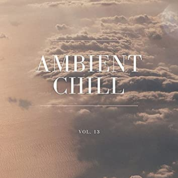 Ambient Chill, Vol. 13