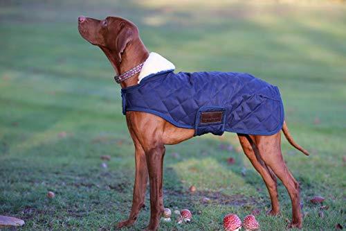 kentucky Hundemantel, 35 cm, Marineblau