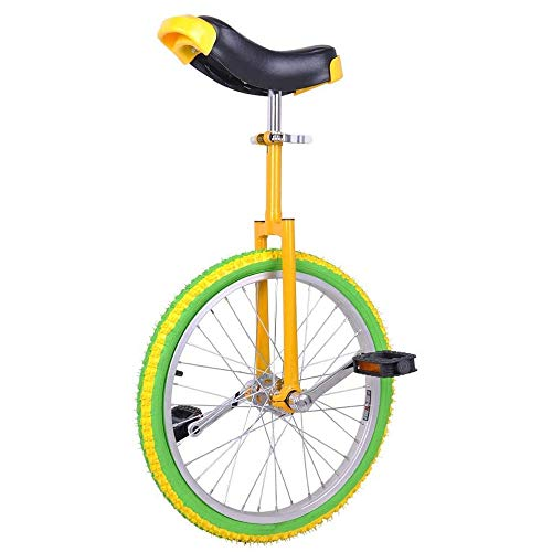 LQRYJDZ Monociclo de 20 Pulgadas Rueda - A Prueba de Fugas butílico del neumático Rueda de Ciclo al Aire Libre Deportes de Ejercicio físico Salud