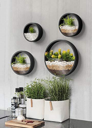 KnikGlass Murale Planteur Ensemble de 4 pièces Vase à Fleurs jardinières murales en métal Ronds Pot de planters Pot de Fleurs décoration Murale pour Plantes d'intérieur succulentes (Noir)