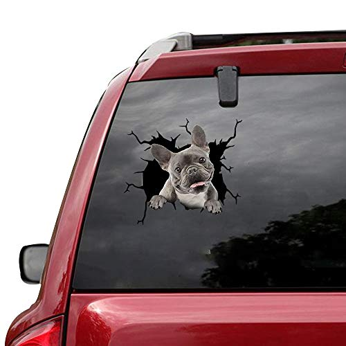 VUGALOLY STORE 1 pcs Funny French Bulldog Dog Baby Miniature Puppy Facts Sticker Cars Crack Decal Trucks Walls Laptops 12x12inch Da-0221