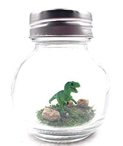 1 Inch Pet T-Rex Dinosaur Terrarium with Adoption Certificate