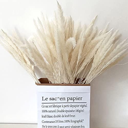ukiyo 30 flores secas de Pampas blancas, extra esponjosas y reales en paquete de regalo respetuoso con el medio ambiente, longitud: 42-43 cm