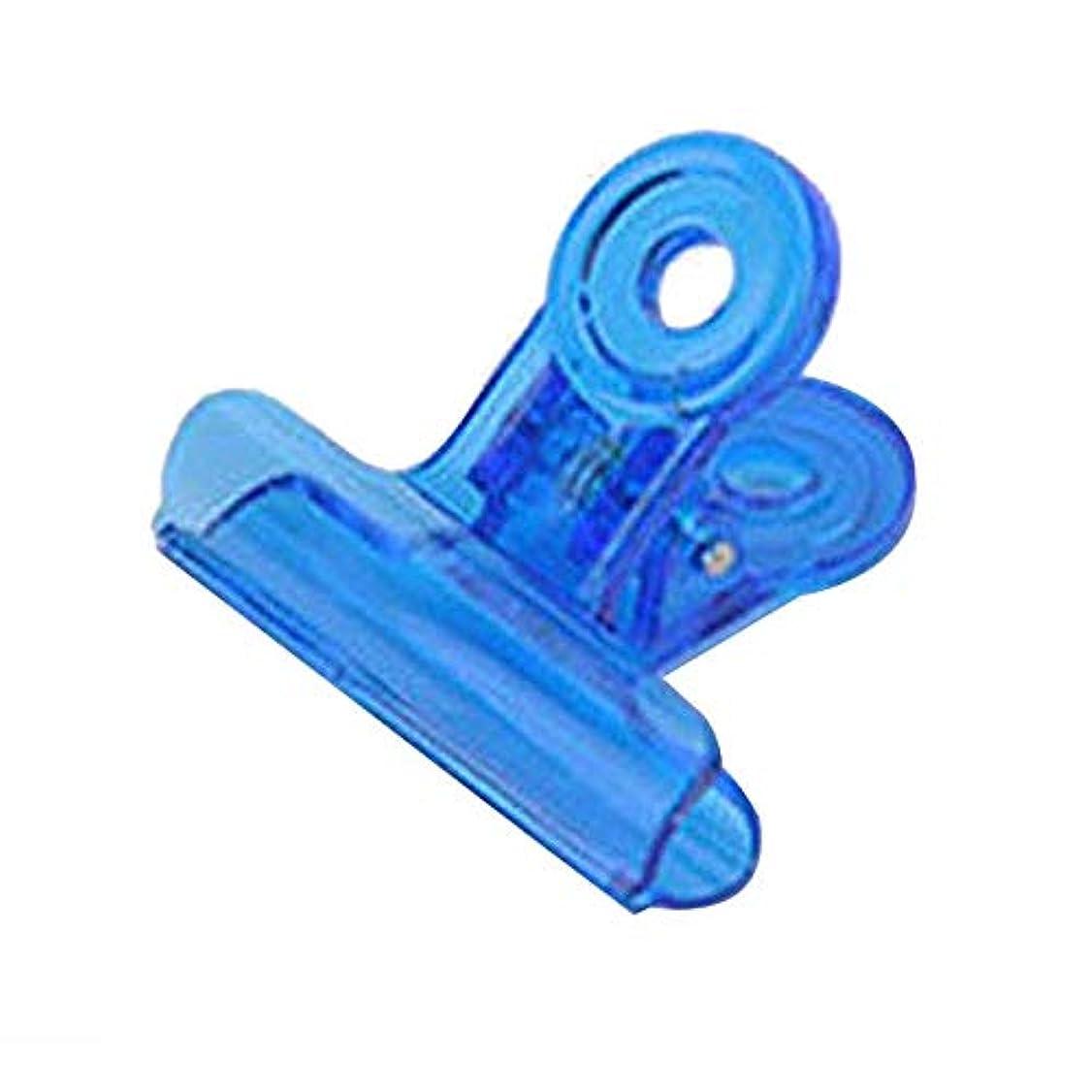 滑る無条件カスタムTOOGOO カーブネイルピンチクリップツール多機能プラスチック爪 ランダムカラー(ブルー)