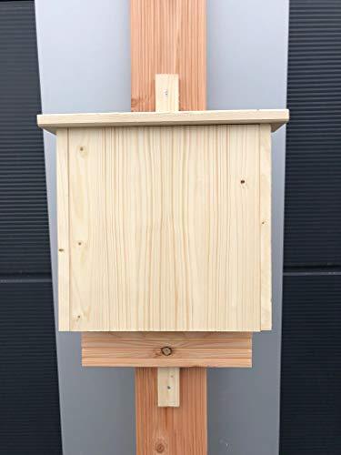 Fledermauskasten Bat Box