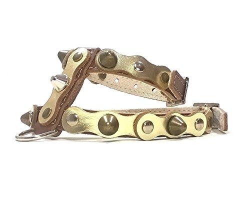 Superpipapo Handmade Braun Gold Leder Hundegeschirr, Leine Optional, Ausgefallen und Individuell Geschirr Design für Mittelgroße Hunde, ML: Hals 32-37 cm, Brust 47-52 cm