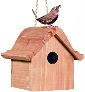 Best small bird house Reviews