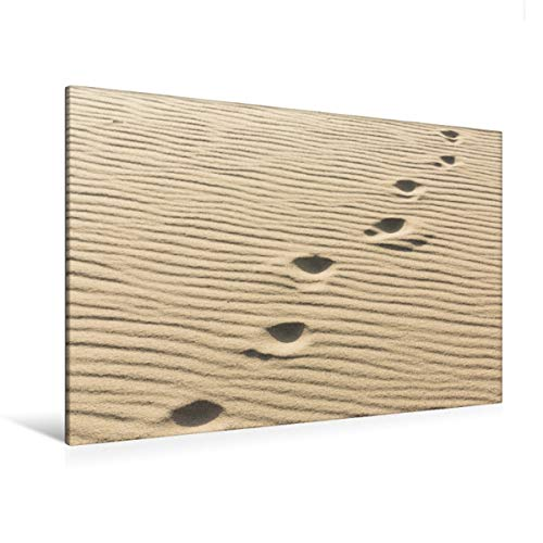 CALVENDO Premium Textil-Leinwand 120 cm x 80 cm quer, EIN Motiv aus dem Kalender Sylt - Magische Momente   Wandbild, Bild auf Keilrahmen, Fertigbild auf echter Fußspuren im Sand Natur Natur