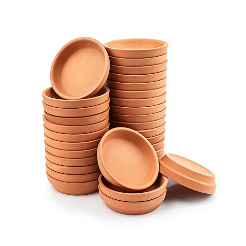 2 Inch Small Terracotta Pot Plant Saucer  32 pcs Mini Round Plant Pot Saucers Tiny Clay Plant Trays Perfect for 1 inch 2inch 25inch Flower Plant Pot with Drainage Hole and Great for Indoor Outdoor