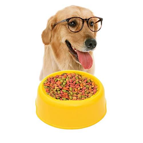 Tuzi Qiuge Kunststoff Material Einzel Haustiere Schüsseln Hund Katze Licht-Süßigkeit-Farben (Color : Blue)