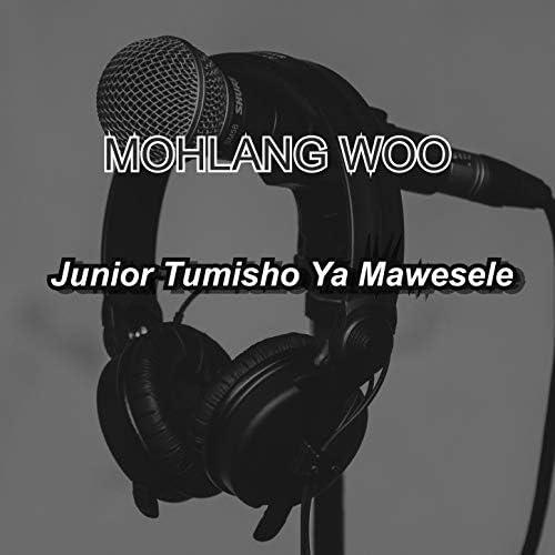 Junior Tumisho Ya Mawesele